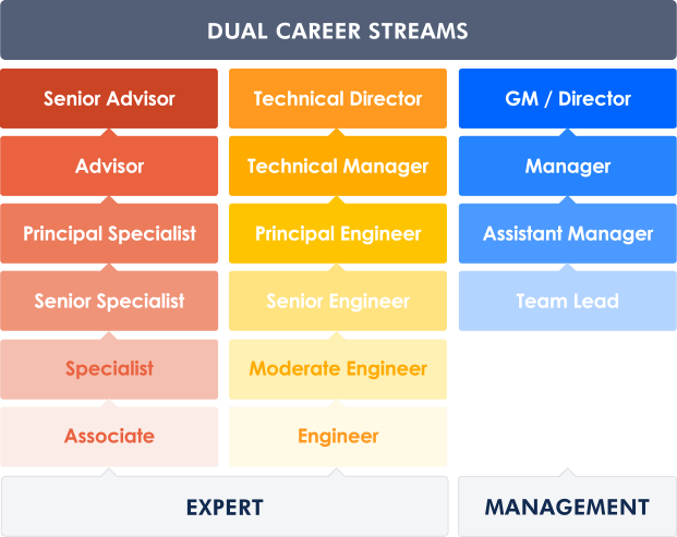 Dual-Stream Development